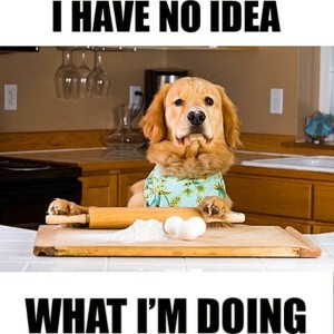 cooking-dog-meme